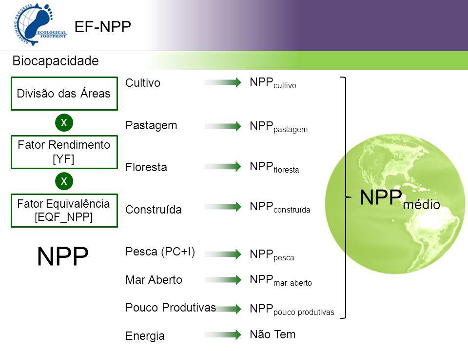 Fator Equivalência [EQF_NPP]